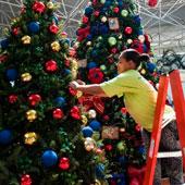 Montar Árvore de Natal em francês